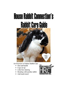 HRC Rabbit Care Guide